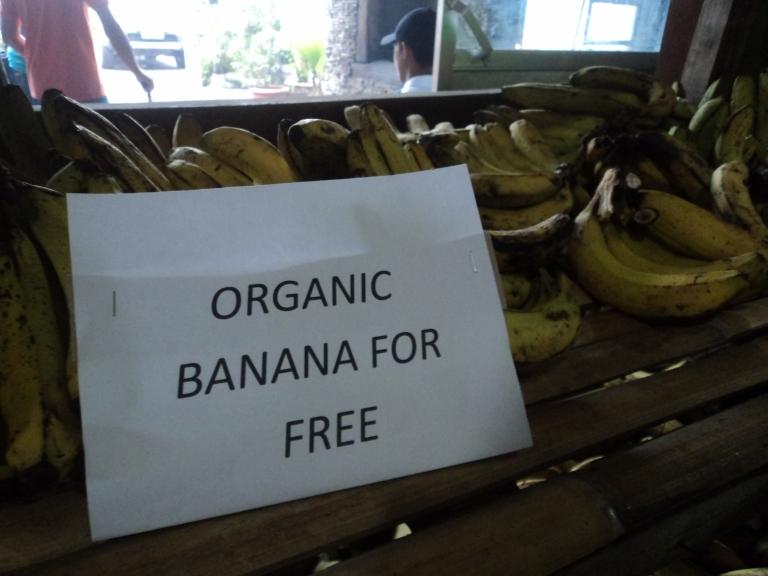It said its free!