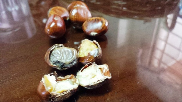 Open chestnuts